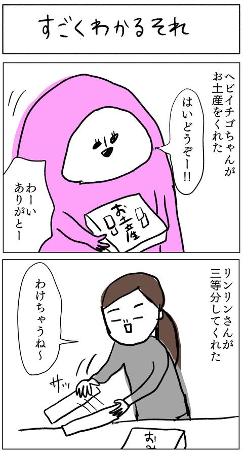 IMG_7311