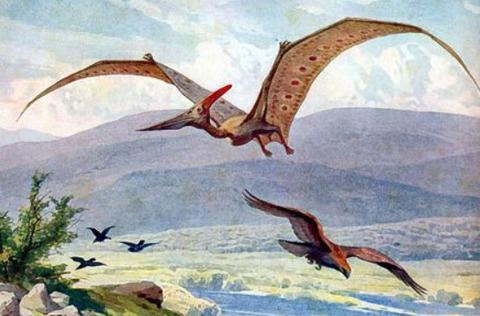 学者「翼竜は飛べなかった!」「ティラノサウルスはスカベンジャーやった!」