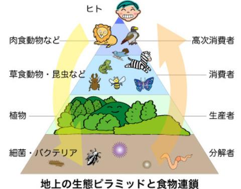 一番自然に人類が食物連鎖の頂点から引き摺り下ろされるパターンって何がある?