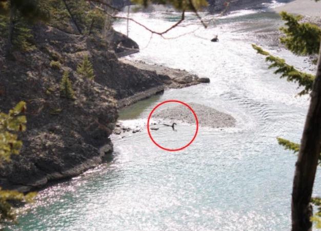 【恐竜伝説】カナダのアルバータ州にあるバンフ国立公園にネッシーが出現