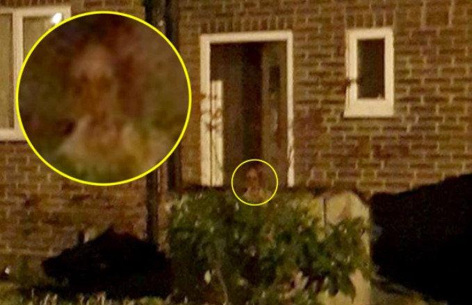 イギリスの幽霊屋敷に子どもの霊が出現 : ザ・ミステリー体験