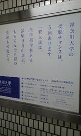 3582b126.jpg