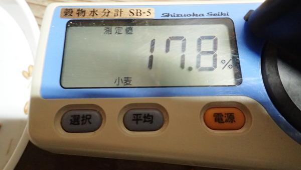 P5310006