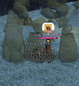 化石Huge Lucky Bonus!
