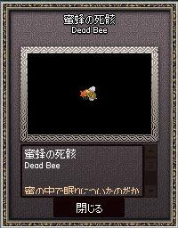蜜蜂の死骸