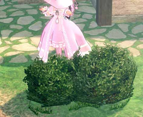 ティルコネイルの草