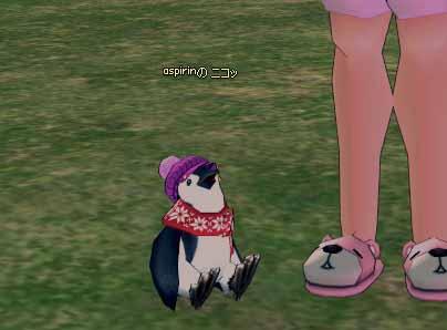 ニット帽ペンギン