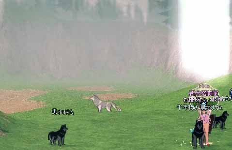 千年物の黒オオカミ