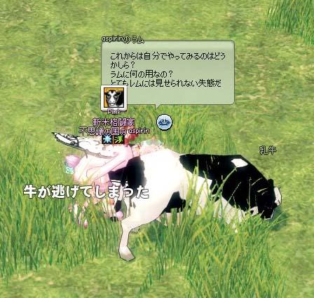 牛が逃げてしまった