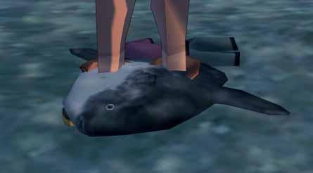 溺死するマンボウ