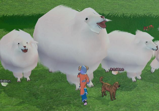 sheep_event