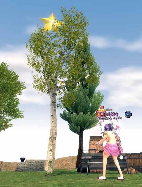 成長した不思議な木