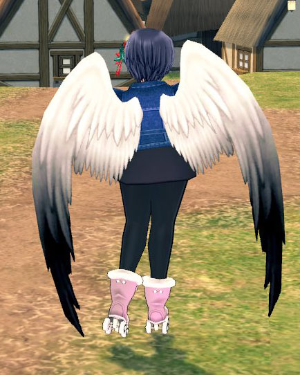 美しい翼だ