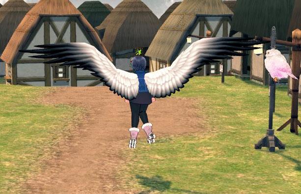 羽を広げる