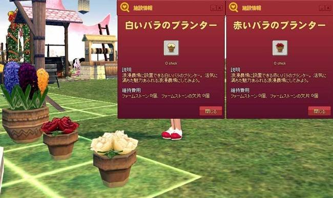 赤いバラのプランター