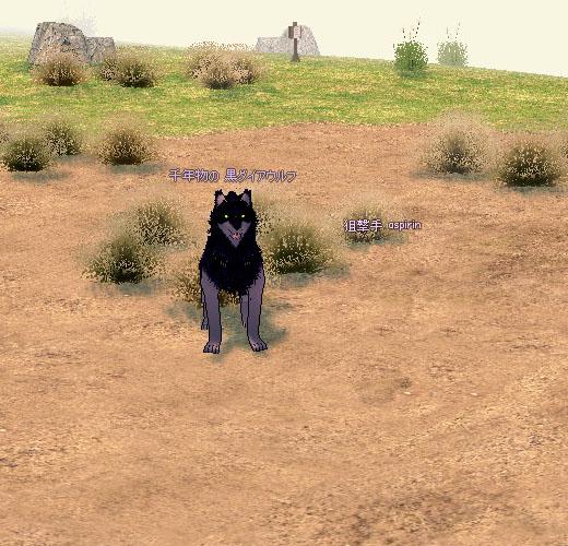 千年物の 黒ダイアウルフ
