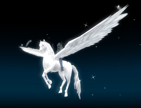 pegasus_ride 6