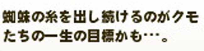 (´・∀・`)ヘー