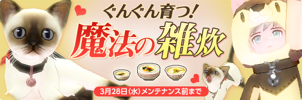 news_180307_zousui_hf6