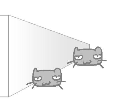 どちらのネコが大きく見えるか