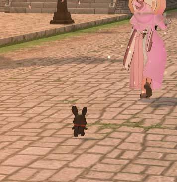 従順なウサギ