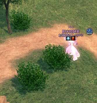 タルティーンの草