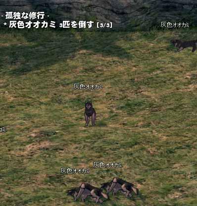 灰色オオカミ3匹を倒す