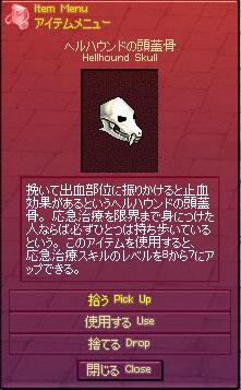 ヘルハウンドの頭蓋骨