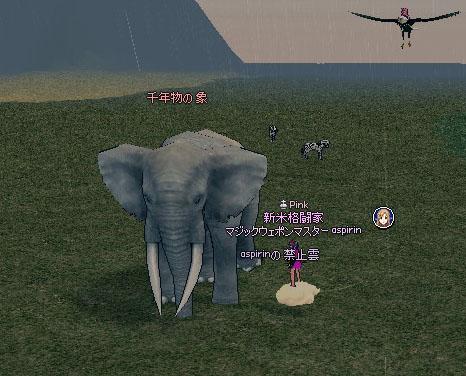 千年物の 象