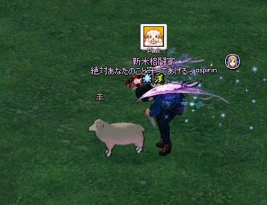 羊毛刈りw