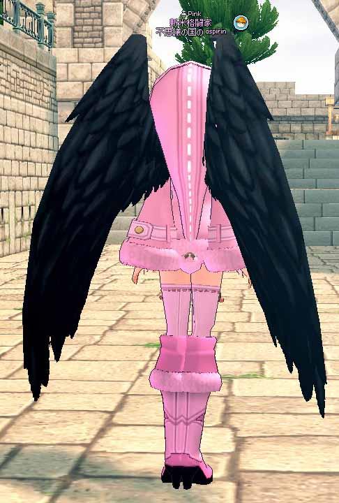 黒き天使の翼背面