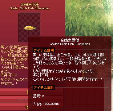 金輪魚亜種301cm