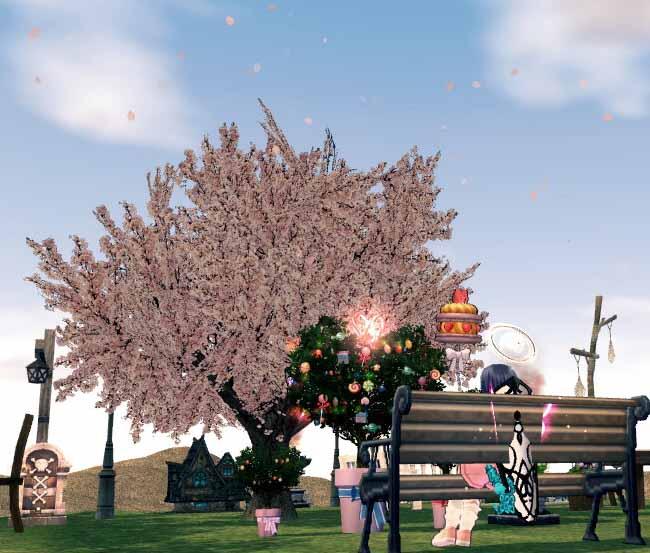 ちくらの木