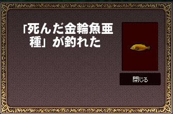 死んだ金輪魚亜種