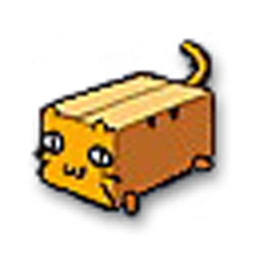 変なネコの箱