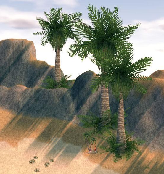 クソデカヤシの木