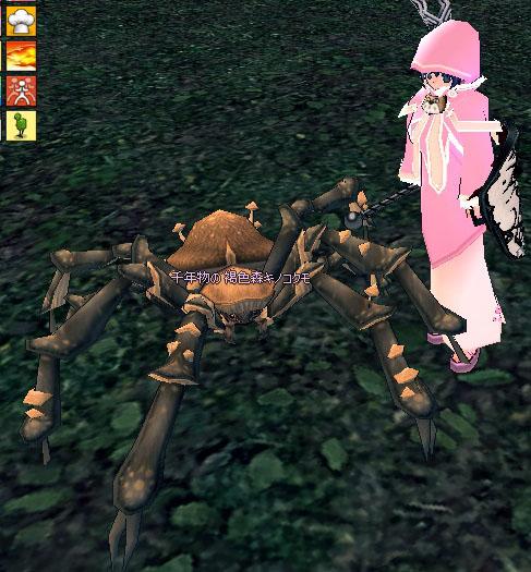 千年物の褐色森キノコクモ