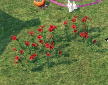 赤いバラのタイル