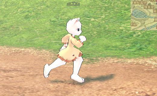 走るペルシアン