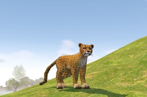 mabinogi_Cheetah_2012100601