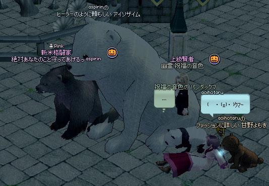 いろいろなクマ