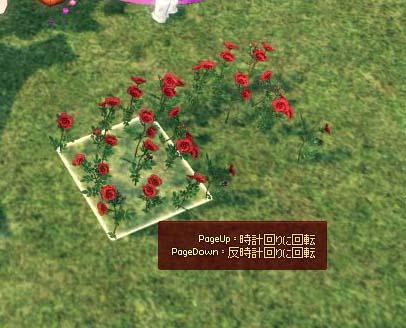 新規浪漫農場設置物