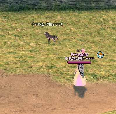 恐る恐るオオカミへ近づく