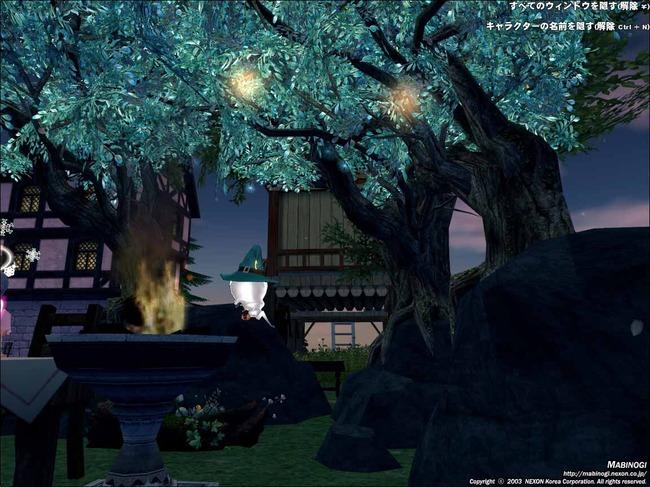 輝く木の下