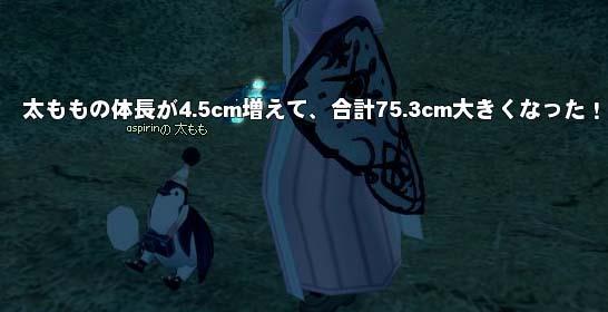 大きくなってないペンギン