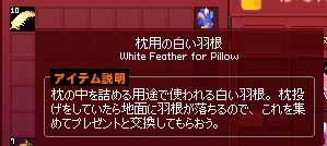 枕用の白い羽根10枚