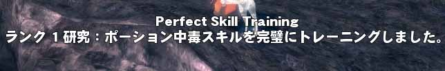 Perfect Skill Training