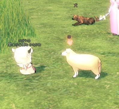 求愛する羊