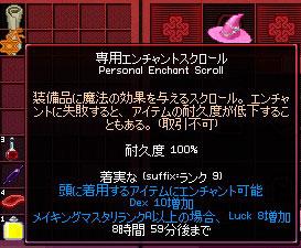 mabinogi_2010_10_25_004