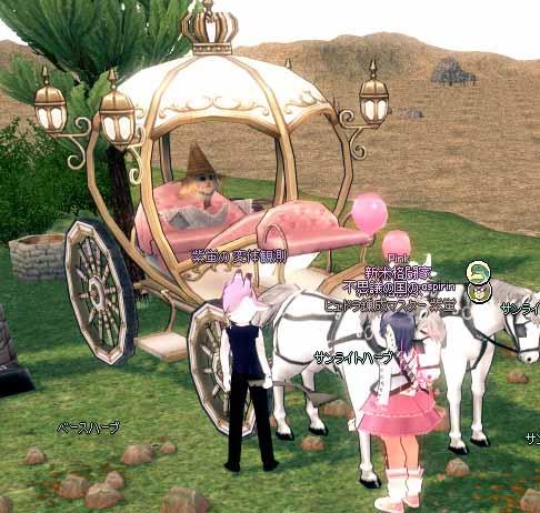 パートナーの貴族馬車